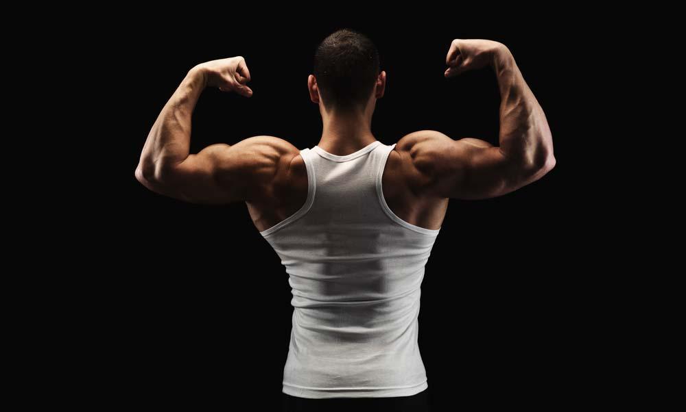 efectul testosteronului asupra erecției