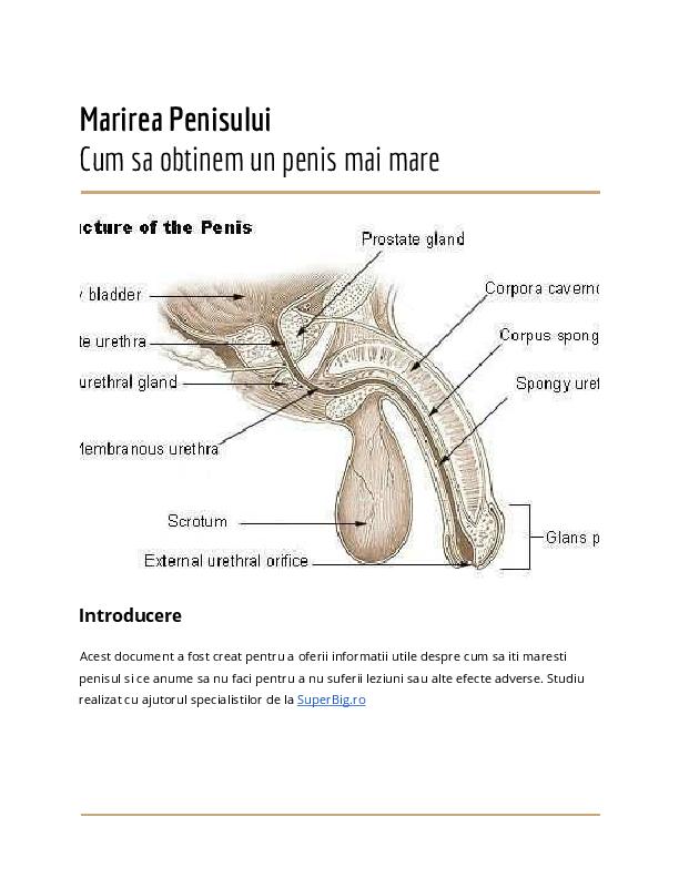 dimensiuni uriașe ale penisului