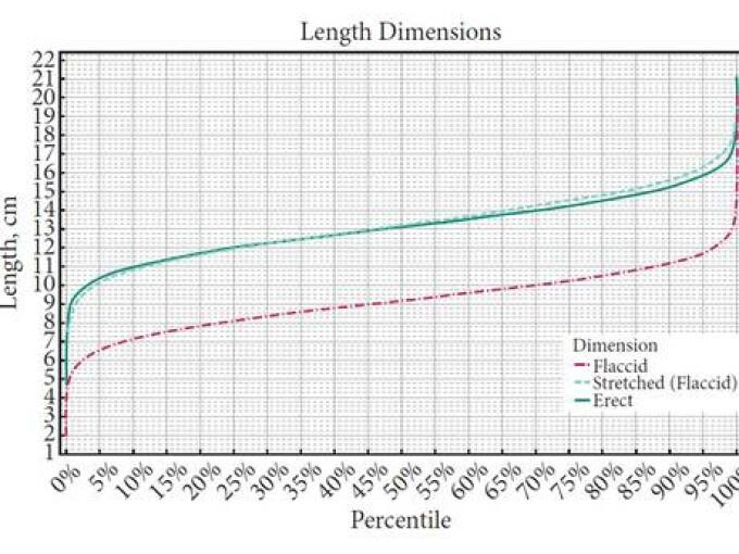 dimensiunile penisului masculin după rasă