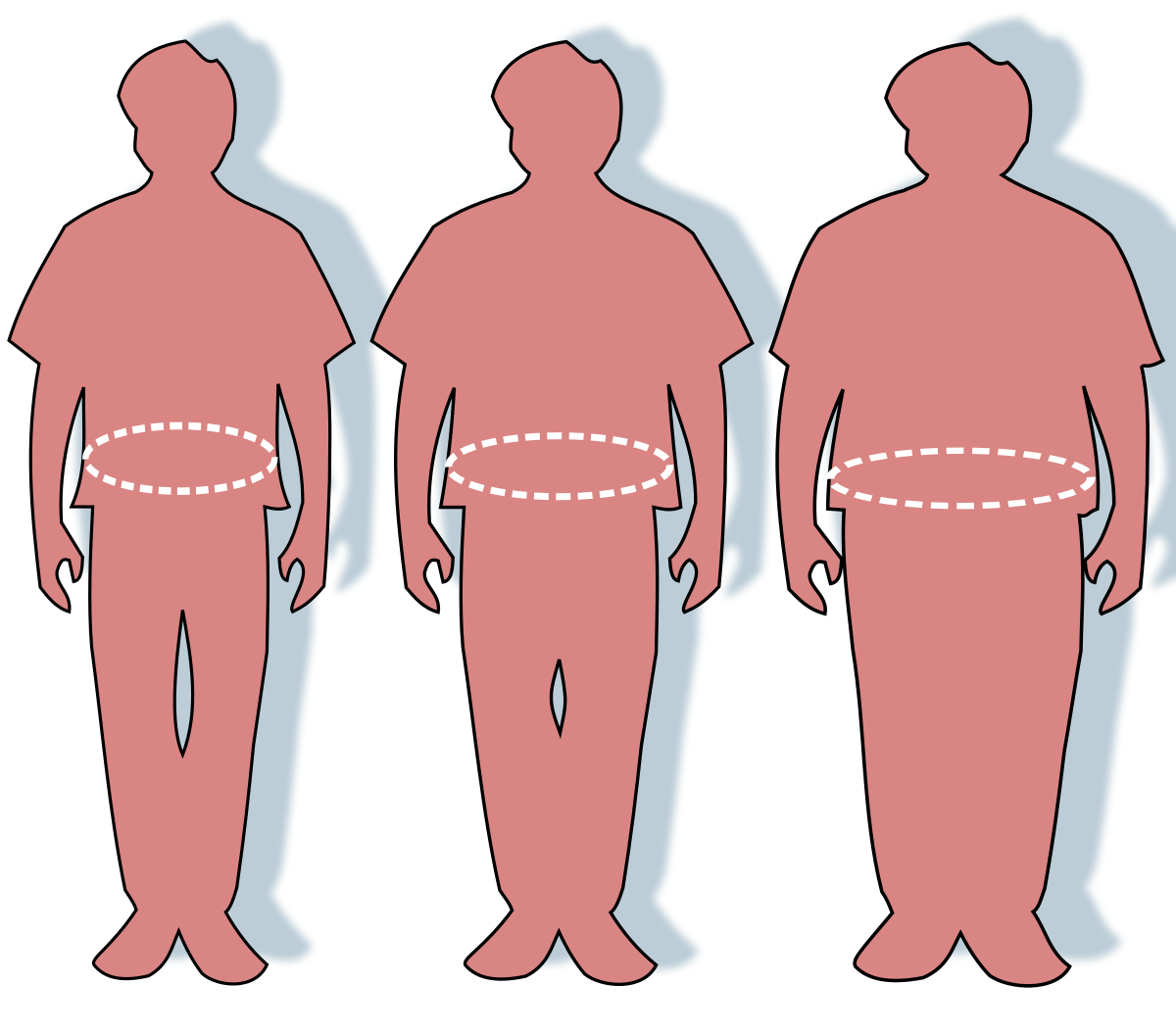 penis la persoanele obeze