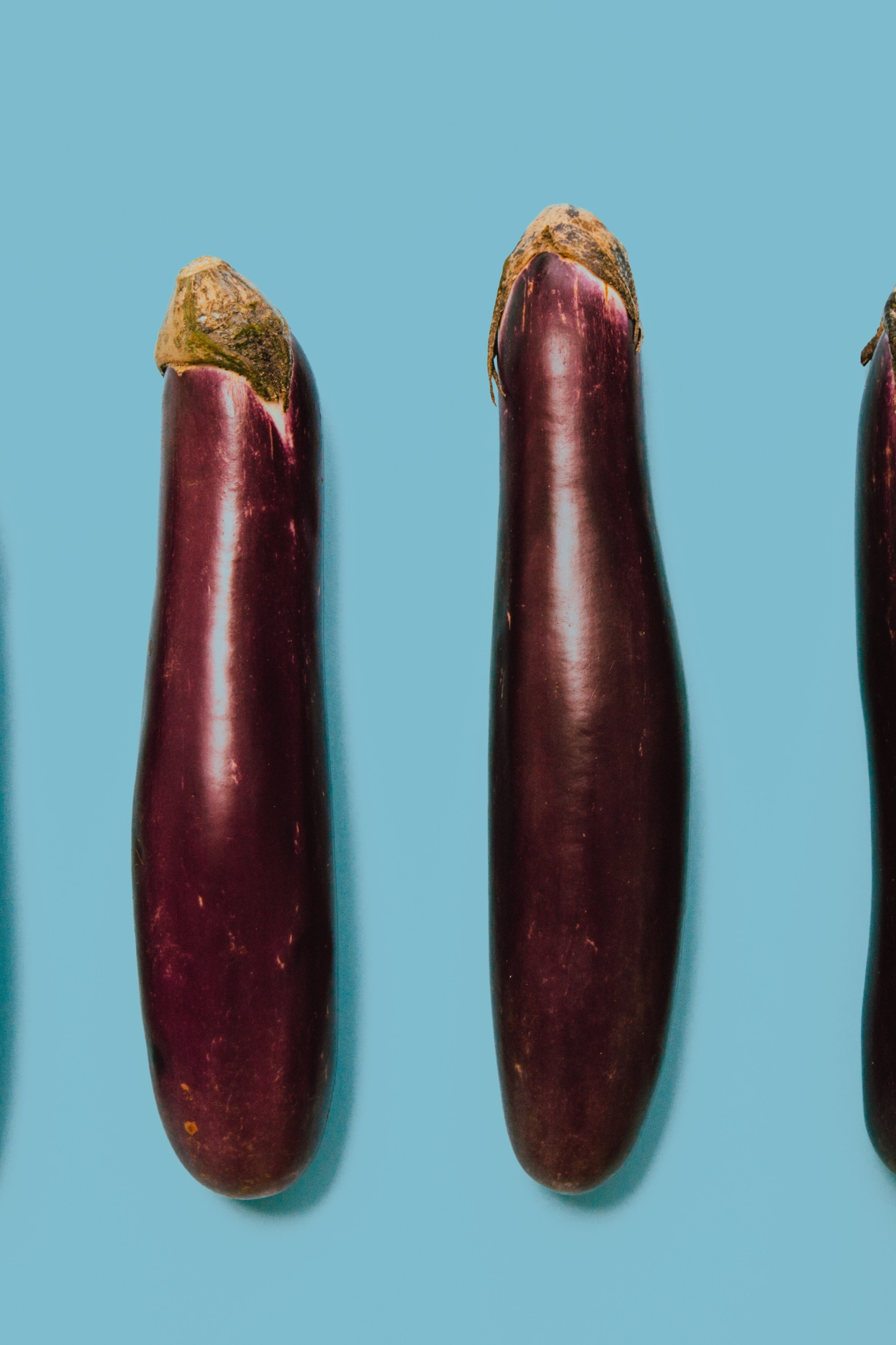 apariția penisului în timpul erecției