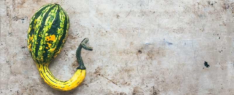 penis de diferite tipuri dimensiunea penisului depinde de înălțimea bărbatului