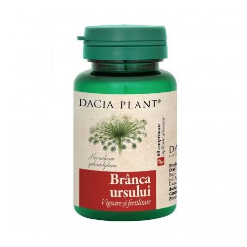 erecție de plante medicinale