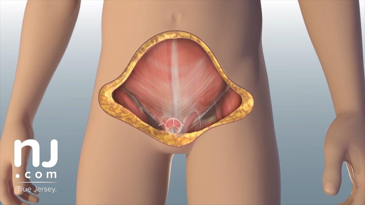 penisuri masculine nr cum să stimulezi o erecție
