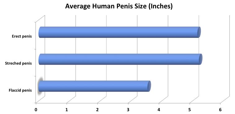 a pompat penisul