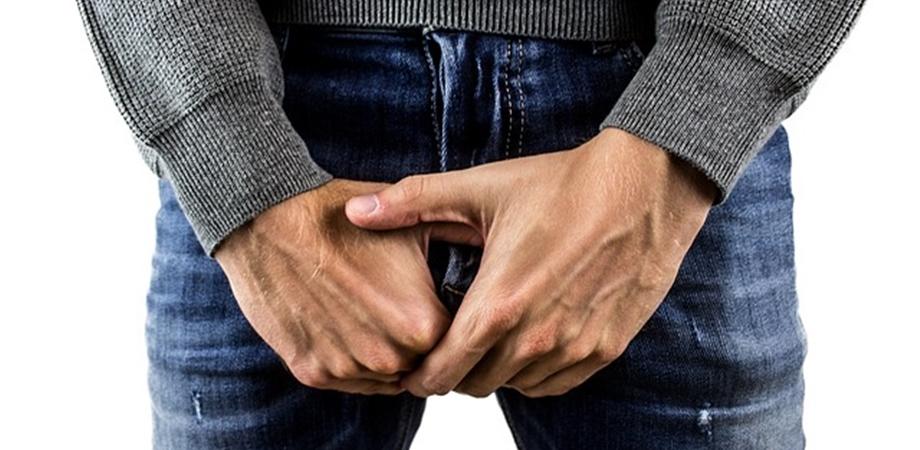 în timpul unei erecții, un testicul se ridică